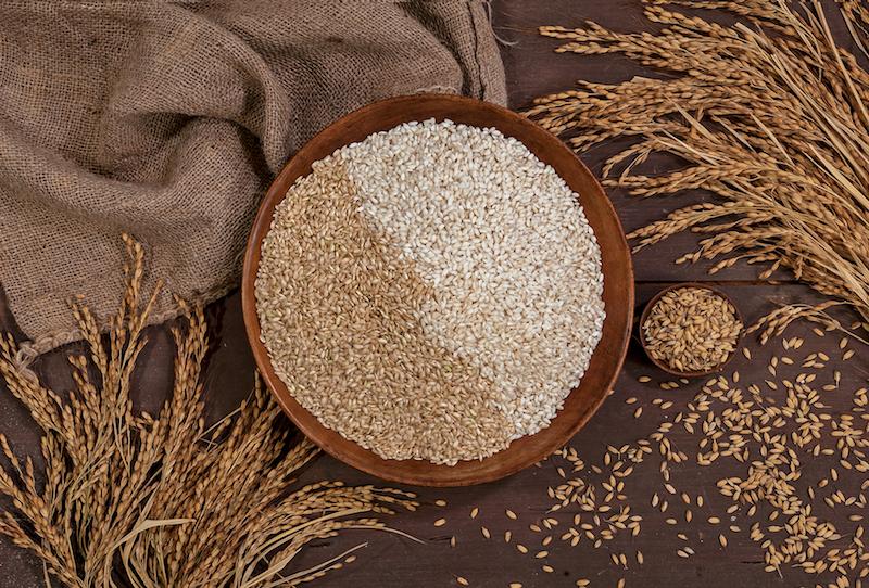 riso-carnaroli-tenuta-margherita