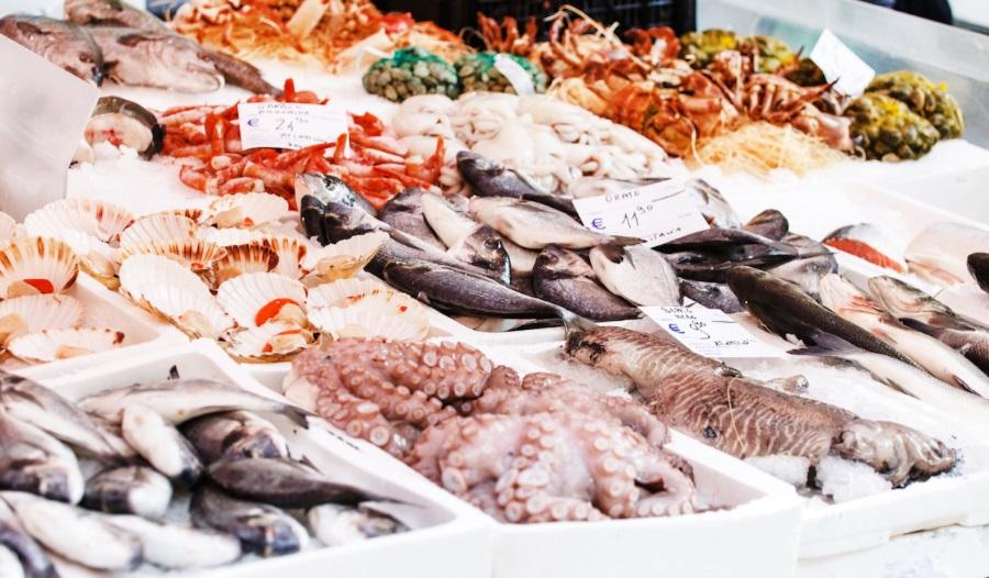 acquisti ittico